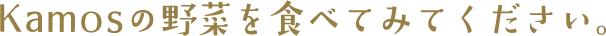 title_yasai